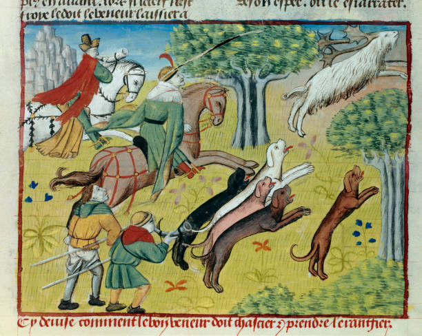 book of hunting how we should hunt deer pictures getty images
