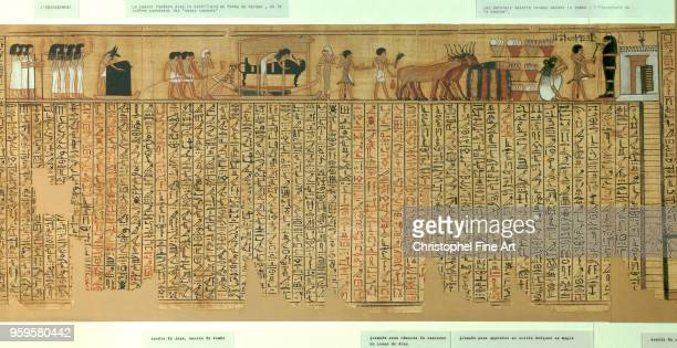 Book of the Dead of the scribe Nebqed realm of Amenophis III 18th Dynasty papyrus l 6 30 m Egyptian Art Louvre Museum Egypt
