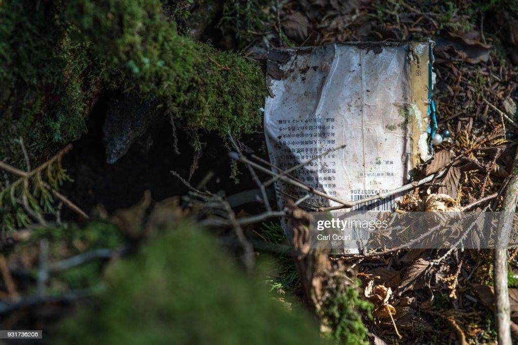 Inside Japan's Suicide Forest