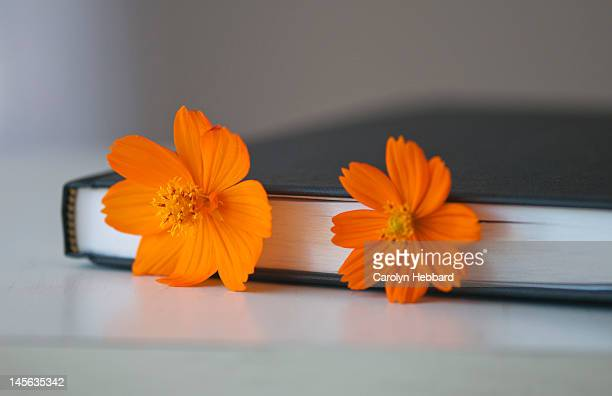 Book with flower bookmarks