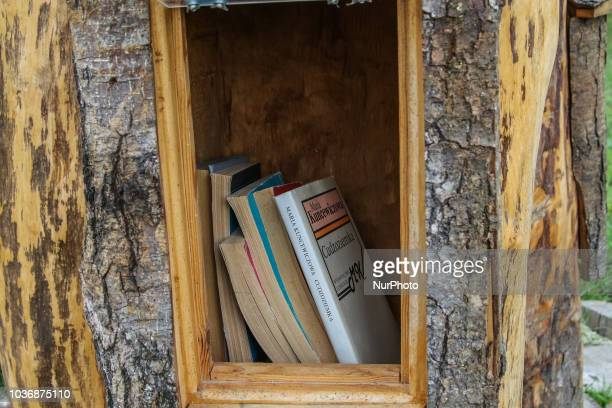 BookCrossing place located in the carved tree trunk is seen in Bialowieza, Poland on 7 September 2018 People leave books in this public place to be...