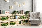 Books and plants on shelf