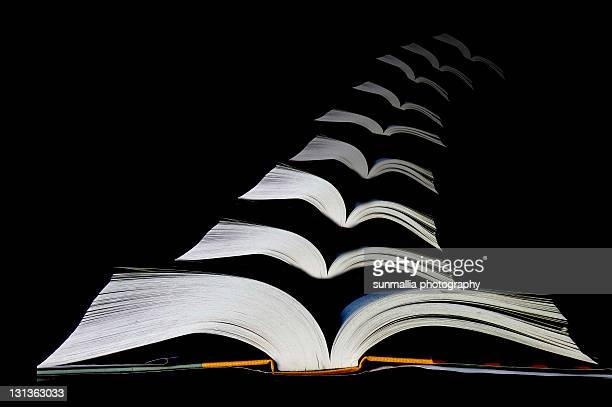 books - san bruno stock pictures, royalty-free photos & images
