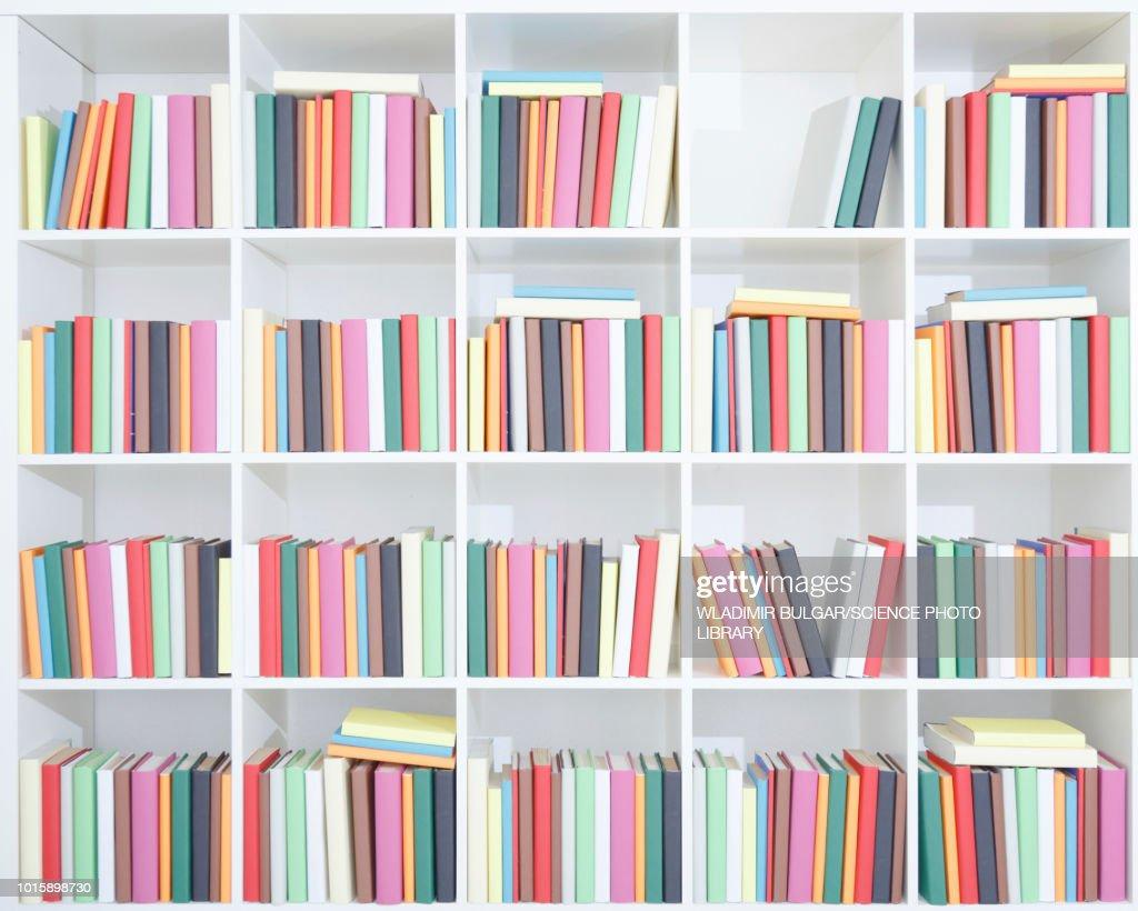 Bookshelf with books : Stock Photo