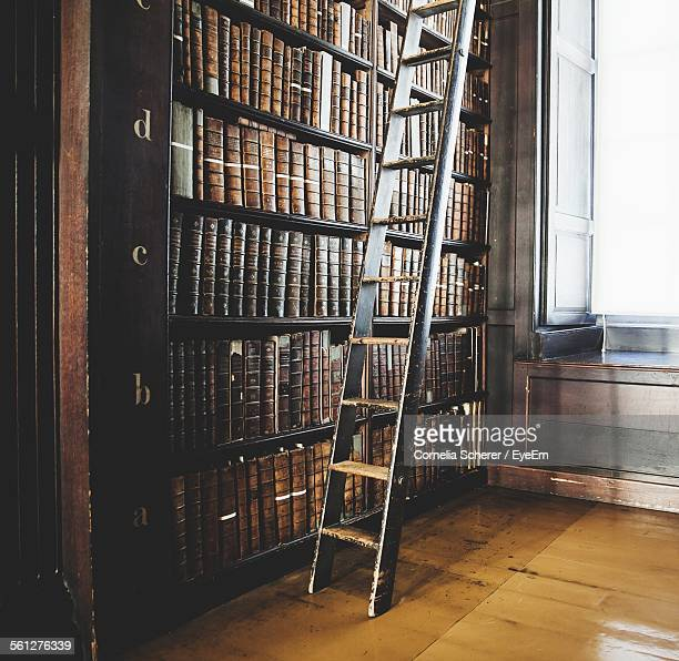 Bookshelves With Ladder
