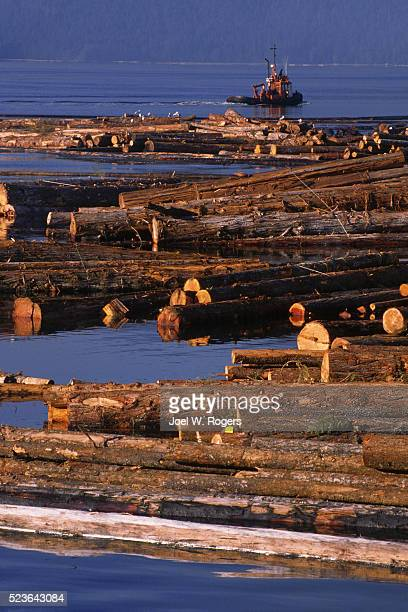 boom boat gathering floating logs - joel rogers stock pictures, royalty-free photos & images