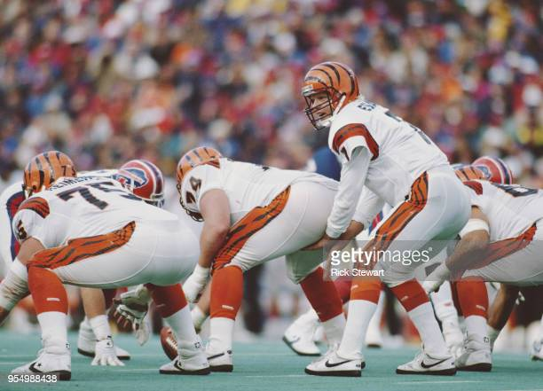 Boomer Esiason Quarterback for the Cincinnati Bengalsrncalls the play on the line of scrimmage during the American Football Conference East game...