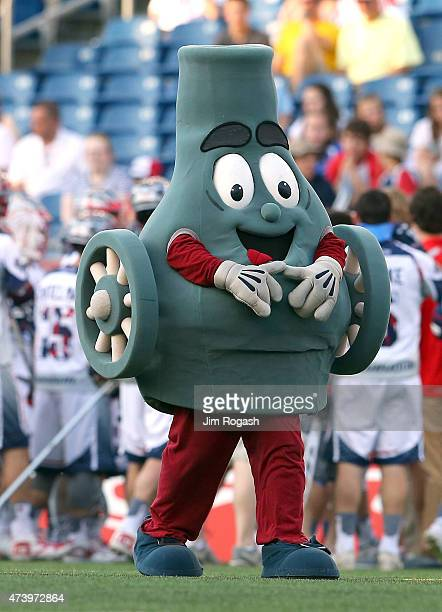 Boomer the mascot of the Boston Cannons watches the action against the Rochester Rattlers at Gillette Stadium on May 17 2015 in Foxboro Massachusetts