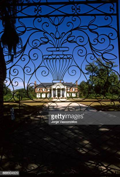 boone hall plantation - est 1676 - mount pleasant - charleston - south carolina - boone hall plantation stock pictures, royalty-free photos & images