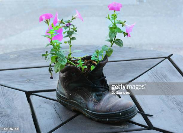 Boot with flowers on an outdoor restaurant table in Bantry, Ireland.