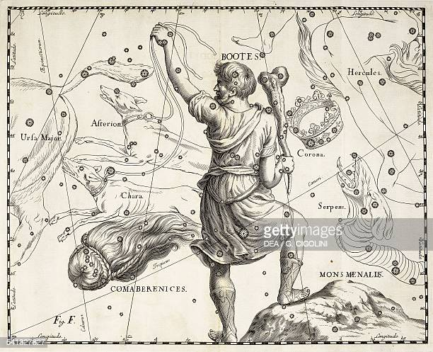 Bootes Coma Berenices et Mons Maenalus the boreal constellations of the Bear Driver Berenice's Hair and Mount Maenalus illustration taken from Johann...