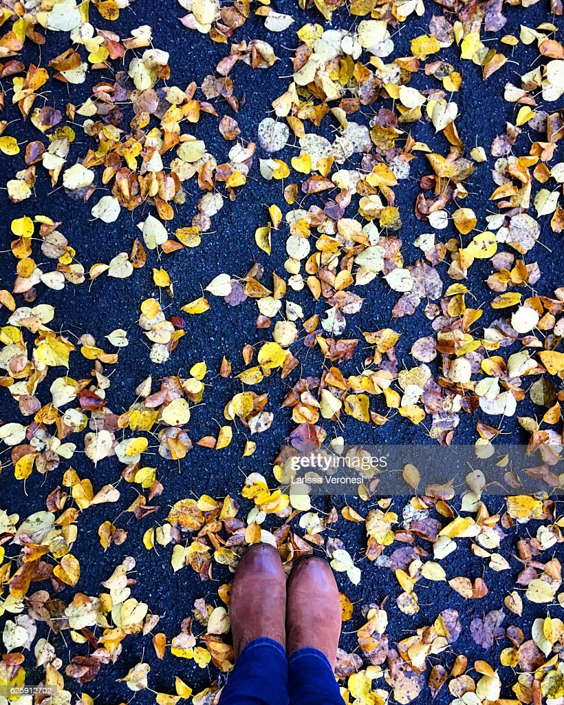 Boots in autumn leaves : Stock-Foto