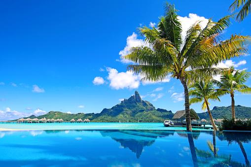 Bora Bora Infinity Pool 518151230