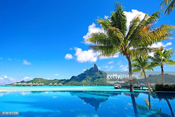bora bora infinity pool - idyllic stock pictures, royalty-free photos & images