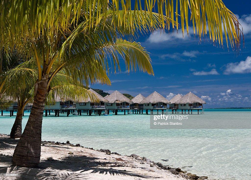 Bora Bora : Stock Photo