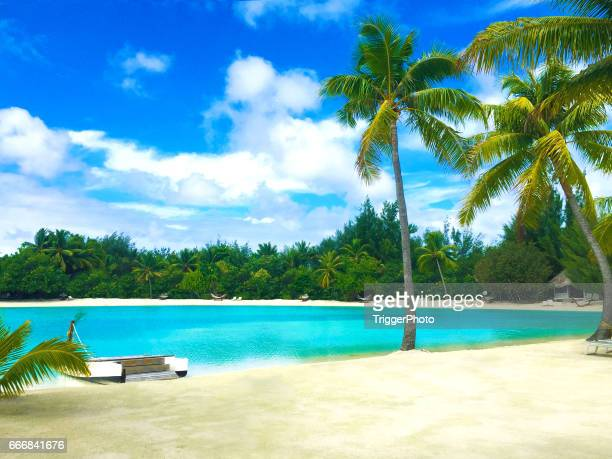 bora bora tahiti beach - pacific islands stock pictures, royalty-free photos & images