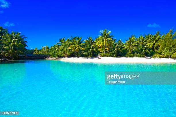 bora bora tahiti - standing water stock pictures, royalty-free photos & images