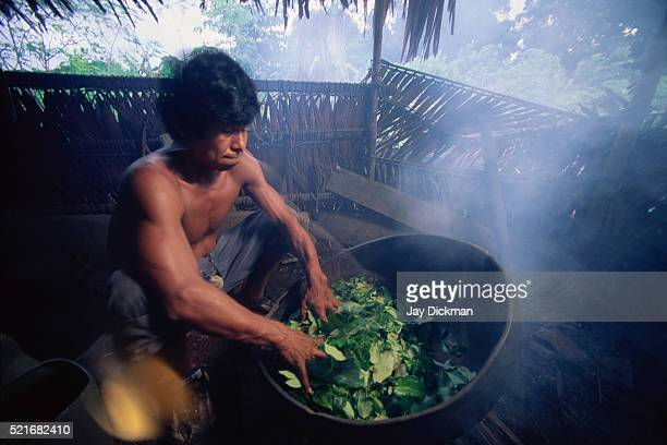 Bora Indian Man Cooking Coca Leaves