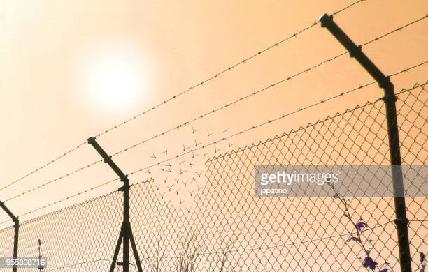 border fence wall against illegal immigration - national border stock pictures, royalty-free photos & images