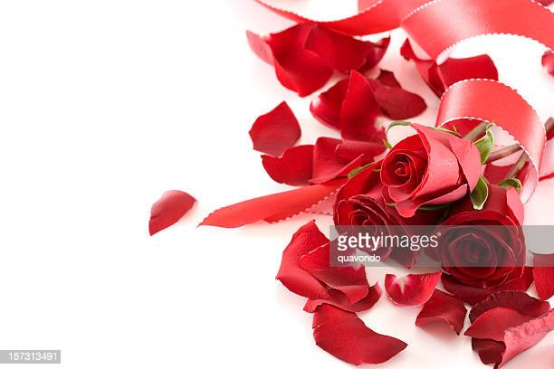 Border of Roses and Ribbon with Copy Space, On White