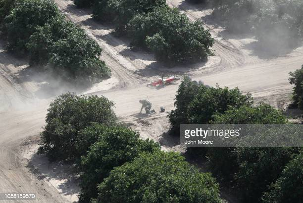 S Border Patrol agent recovers after crashing his ATV while in pursuit of undocumented immigrants in an orange grove on November 6 2018 in McAllen...