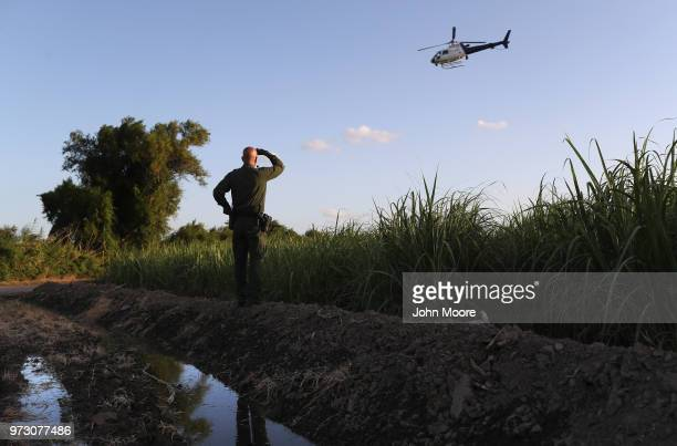 S Border Patrol agent searches for a group of undocumented immigrants hiding in a sugarcane field near the USMexico Border on June 12 2018 near...
