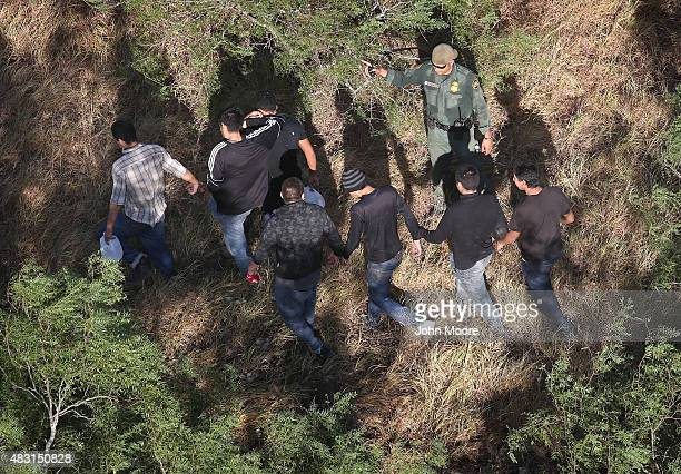 S Border Patrol agents detain undocumented immigrants near the USMexico border on August 6 2015 near San Isidro Texas Border security and illegal...