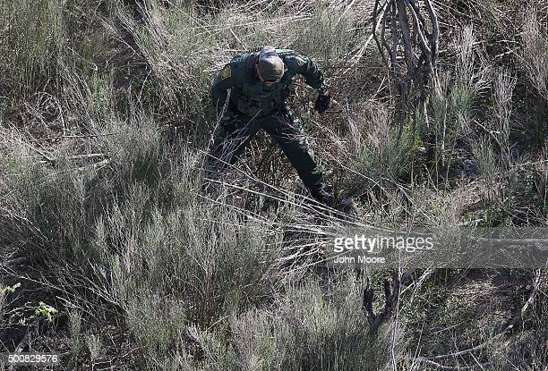 Border Patrol agents finds juvenile undocumented immigrants hiding in thick brush near the U.S.-Mexico border on December 10, 2015 at La Grulla,...