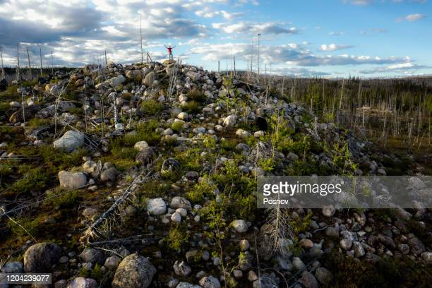 boreal forest at trans-taiga road region in northern quebec - first nations stock pictures, royalty-free photos & images
