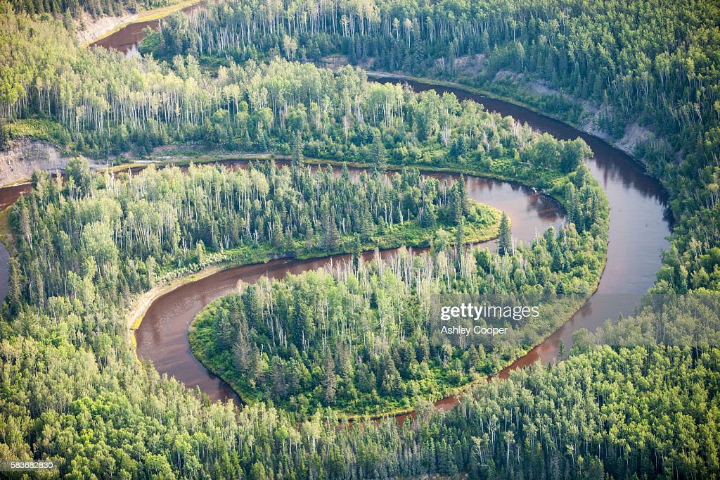 boreal forest in northern alberta canada near fort mcmurray ストック