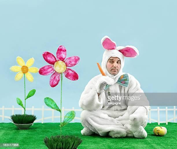 Gelangweilt Bunny