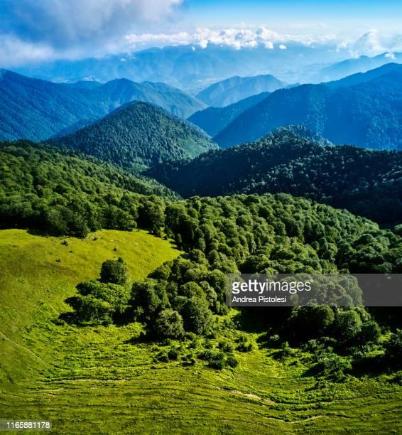 borjomi kharagauli national park, georgia - コーカサス ストックフォトと画像