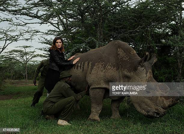 US born model and Bollywood film actress Nargis Fakhri poses besides 'Sudan' the only remaining male nothernwhite Rhino on the planet May 23 2015 at...