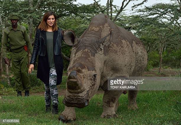 US born model and Bollywood film actress Nargis Fakhri walks besides 'Sudan' the only remaining male nothernwhite Rhino on the planet May 23 2015 at...