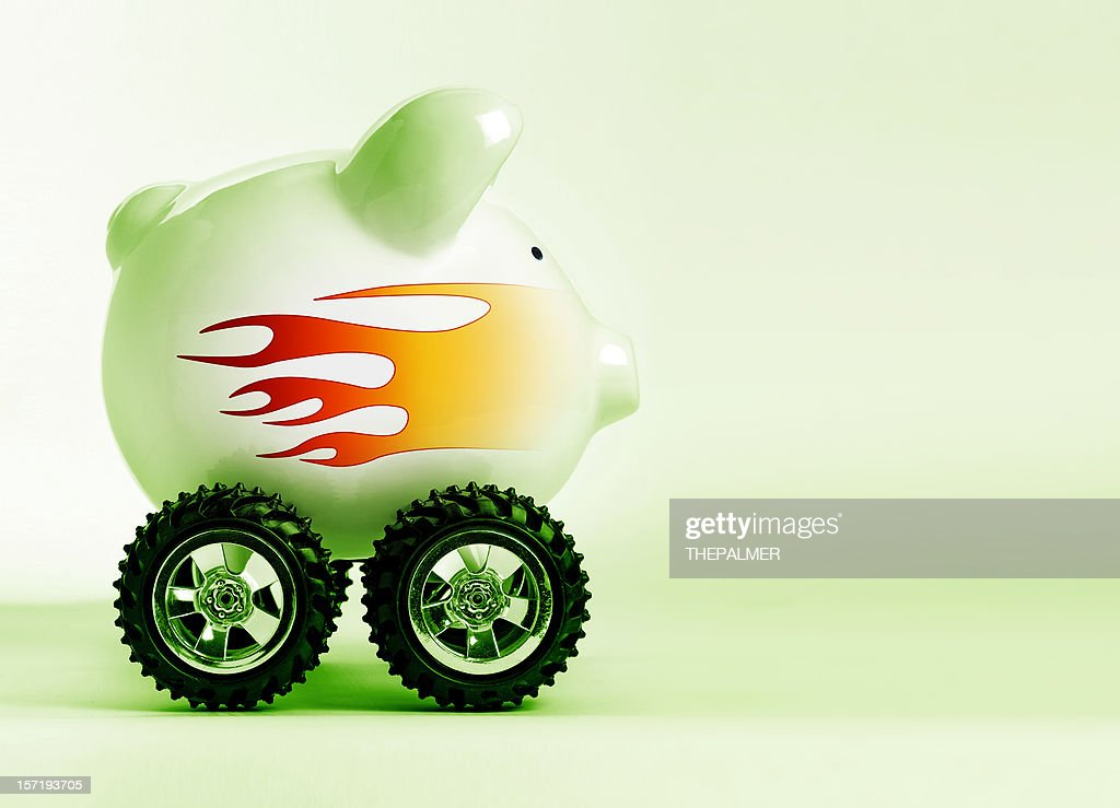 born to be wild : Stock Photo