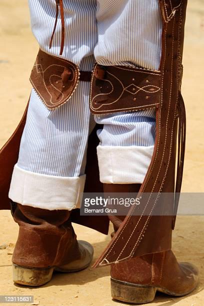 born with horses - bernard grua photos et images de collection