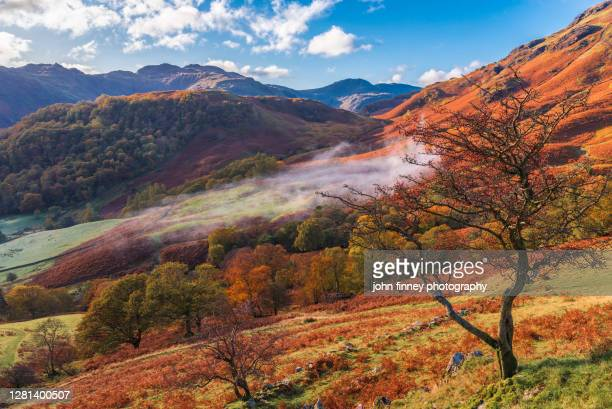 borrowdale and rosthwaite rustic autumn morning - autumn stock pictures, royalty-free photos & images