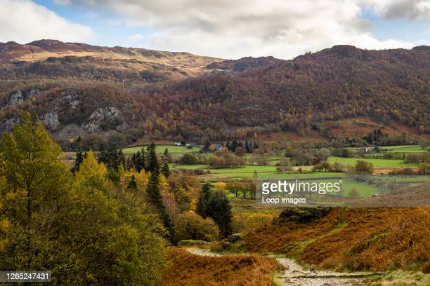 Borrowdale valley with Ashness Fell beyond in the English Lake District National Park.