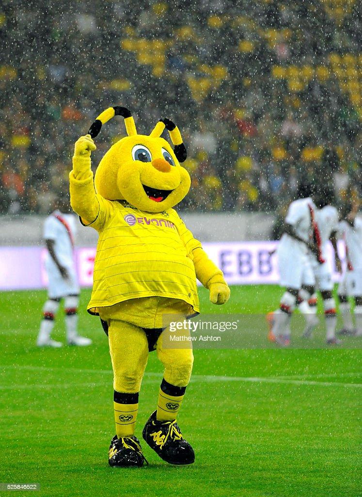 Borussia Dortmund Mascot Emma News Photo Getty Images