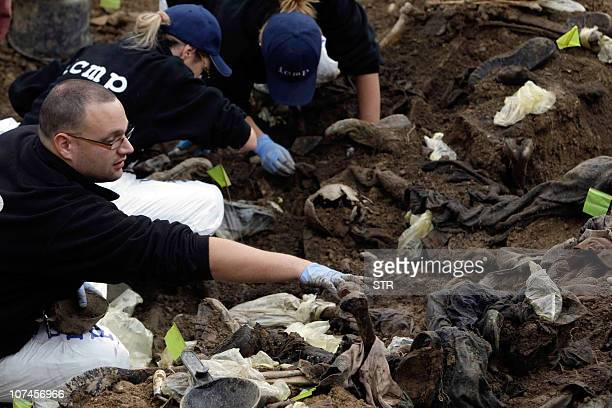 Bosnian forensic experts inspect human remains found in a mass grave in the village of Cerska near eastern Bosnian town of Milici on December 08 2010...