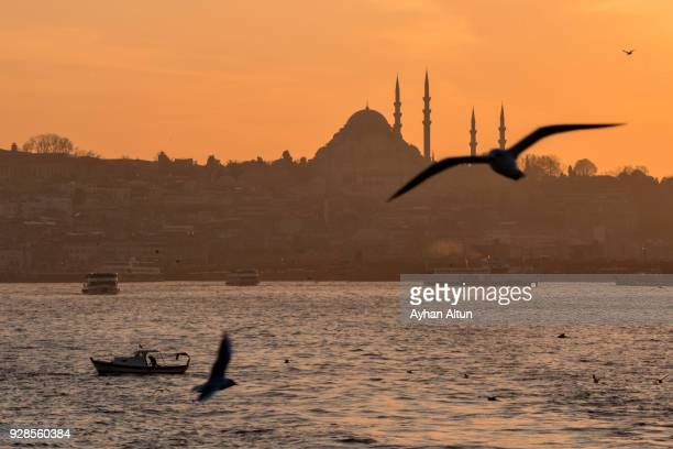Bosphorus at sunset,Istanbul,Turkey