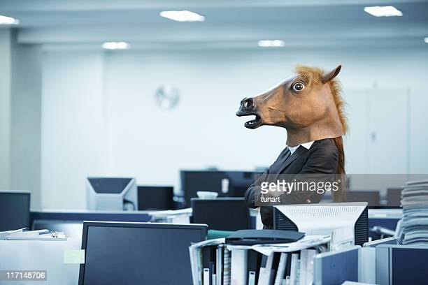 Bossy Horse in Office