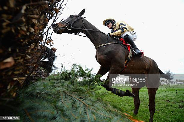 Boston Bob ridden by Paul Townend on his way to victory in the Betford Melling Steeple Chase at Aintree Racecourse on April 4 2014 in Liverpool...