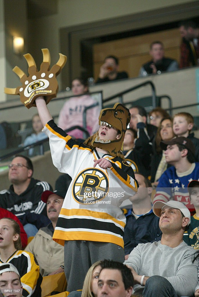 A Boston Bruins fan cheers for their team against the Carolina Panthers on February 5, 2006 at TD Banknorth Garden in Boston, Massachusetts. The Hurricanes won 4-3 in a shootout.