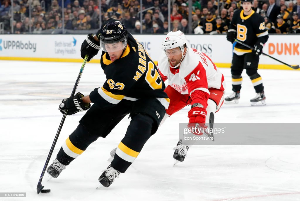 NHL: FEB 15 Red Wings at Bruins : News Photo