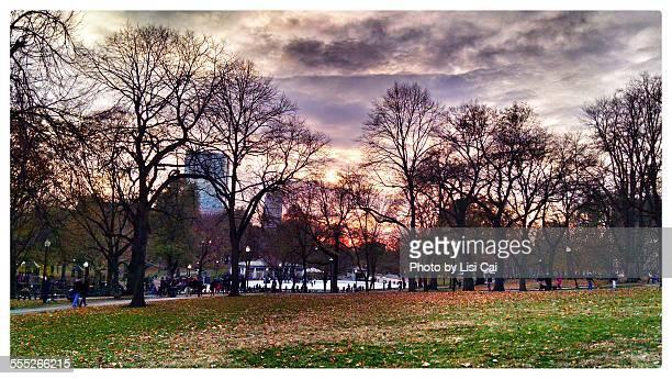 Boston common sunset