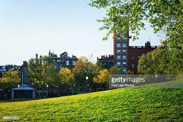 usa boston commons - boston common stock pictures, royalty-free photos & images