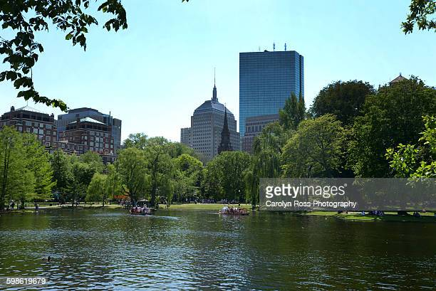 boston commons - carolyn ross stock pictures, royalty-free photos & images