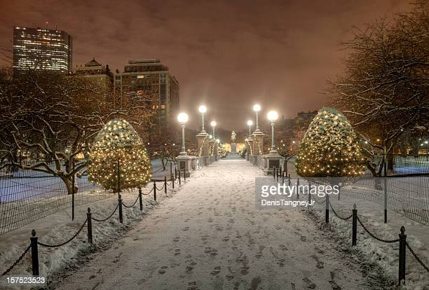 boston public garden at night - boston common stock pictures, royalty-free photos & images