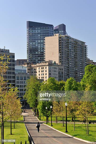 boston public garden - boston common stock pictures, royalty-free photos & images